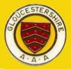 Logo for Gloucestershire CC League Cheltenham (Prince of Wales Stadium)