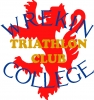 Logo for The Telford Tinman Triathlon 2017