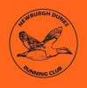 Logo for Newburgh Beach Bash 10k