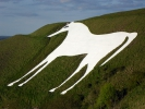Logo for The White Horse Gallop